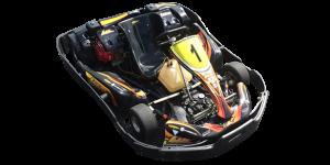 ELK Go Karting Newark